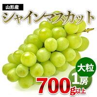 【ふるさと納税】FY20-107大粒シャインマスカット秀品約700g入1箱
