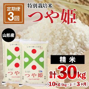 【ふるさと納税】FY21-335 【定期便3回】山形産 特別栽培米 つや姫 10kg(5kg×2)×3ヶ月(計30kg)