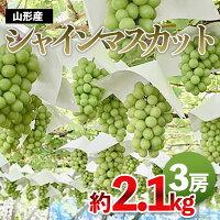 【ふるさと納税】FY21-396山形産シャインマスカット約2.1kg(約700g×3房)