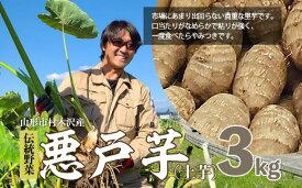 【ふるさと納税】FY18-189 山形市村木沢産 伝統野菜 悪戸芋 (土芋) 3kg