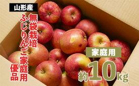 【ふるさと納税】FY20-579 【家庭用】無袋栽培ふじりんご 優品 約10kg入り