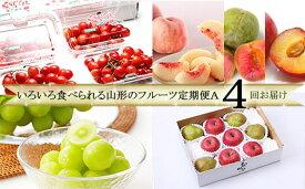 【ふるさと納税】FS20-059 [定期便4回] いろいろ食べられる山形のフルーツ定期便A