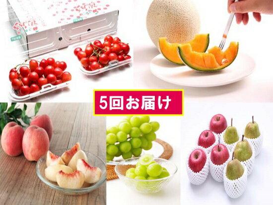 【ふるさと納税】FY18-847【先行予約】フルーツ定期便 少量食べきりセット(5回)