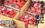 【ふるさと納税】FY18-579【先行予約】【おすそ分けに便利!】山形産さくらんぼ(佐藤錦)1.2kg(200g×6パック)