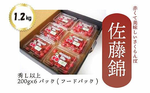 【ふるさと納税】FY18-915【先行予約】さくらんぼ(佐藤錦)1.2kg