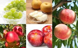 【ふるさと納税】FY19-632 シャインマスカットと季節のフルーツ盛り合わせ