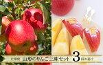 【ふるさと納税】FY19-641【令和2年産先行予約】定期便3回山形のりんご三昧セット