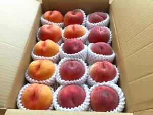 【ふるさと納税】FY19-691【令和2年産先行予約】白桃と黄桃の食べ比べセット(かため)5kg