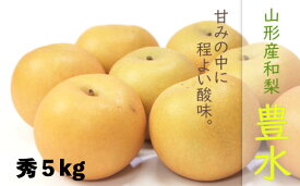 【ふるさと納税】FY19-643【令和2年産先行予約】【果汁あふれる】山形産和梨(豊水)秀5kg