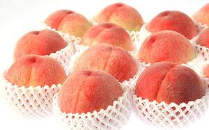 【ふるさと納税】FY19-628【令和2年産先行予約】【白桃】美晴白桃 3kg