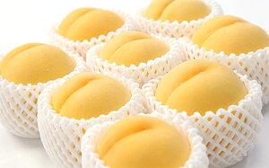 【ふるさと納税】FY19-654【令和2年産先行予約】【黄桃】スイート光黄 秀3kg