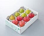 【ふるさと納税】FY19-317サンふじりんごとラ・フランスのセット約3kg