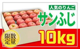 【ふるさと納税】FY19-285 ♪フルーツ王国山形♪サンふじりんご 10kg