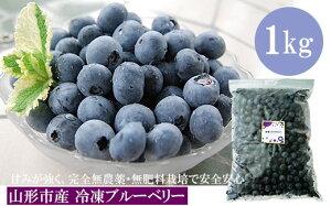 【ふるさと納税】 FY18-202 山形市産 冷凍ブルーベリー 1kg