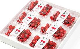 【ふるさと納税】FS19-700 【令和3年産先行予約】さくらんぼ(紅秀峰) 1.2kg(200g×6)