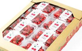 【ふるさと納税】FS19-699 【令和3年産先行予約】さくらんぼ(紅秀峰) 1.6kg(200g×8)