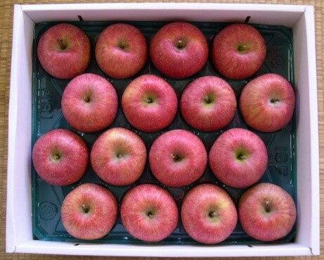 【ふるさと納税】 FY18-758 自然の恵みいっぱいの葉とらずふじりんご 約10kg