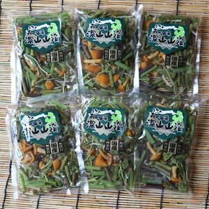 【ふるさと納税】A01-755 国産山菜ミックスセット