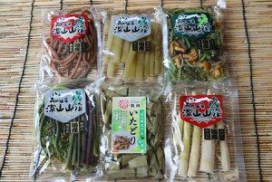 【ふるさと納税】A01-753 国産山菜水煮セット(小)