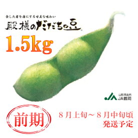 【ふるさと納税】A01-641 鶴岡特産 殿様のだだちゃ豆(前期)(1.5kg)