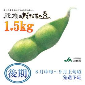【ふるさと納税】A01-642 鶴岡特産 殿様のだだちゃ豆(後期)(1.5kg)