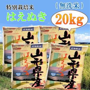 【ふるさと納税】C01-002 特別栽培米はえぬき無洗米20kg
