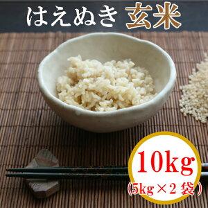 【ふるさと納税】山形県庄内産 令和2年産 新米はえぬき 玄米10kg(5kg×2袋)