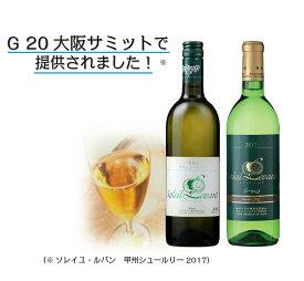 【ふるさと納税】A31-001 白ワイン2本セット
