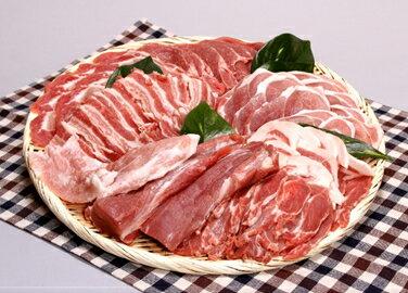 【ふるさと納税】N30-202 高品質庄内豚の詰合せセット