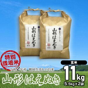 【ふるさと納税】令和2年産 特別栽培米 山形はえぬき 【玄米】11kg(5.5kg×2袋) 一等米 ごはんソムリエ監修