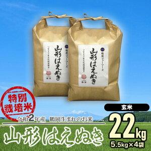 【ふるさと納税】令和2年産 特別栽培米 山形はえぬき 【玄米】22kg(5.5kg×4袋) 一等米 ごはんソムリエ監修