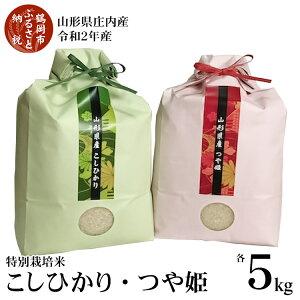 【ふるさと納税】山形県庄内産 令和2年産 特別栽培米 つや姫5kg・コシヒカリ5kgセット