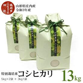 【ふるさと納税】山形県庄内産 令和3年産 新米 特別栽培米 コシヒカリ 13kg(5kg×2袋・3kg×1袋)