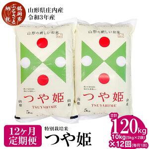 【ふるさと納税】【定期便12ヶ月】【令和3年産米】特別栽培米つや姫10kg(5kg×2袋)×12回