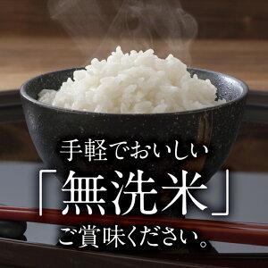 【ふるさと納税】無洗米はえぬき5kg×2袋計10kg令和元年産米山形県産※着日指定不可