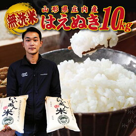 【ふるさと納税】無洗米はえぬき10kg(5kg×2袋) 一等米 令和2年産米 山形県庄内産 ご希望の時期頃お届け ※着日指定不可