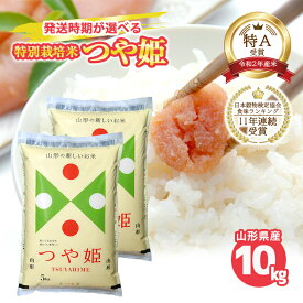 【ふるさと納税】特別栽培米 つや姫 10kg (5kg×2袋) 令和2年産米 山形県産 ご希望の時期頃にお届け 米