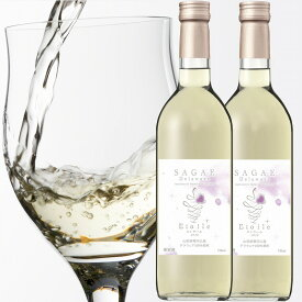 【ふるさと納税】【緊急支援品】寒河江 デラウェア ワイン Sagae Etoile( サガエ エトワール ) 白/やや甘口 2本 セット 寒河江産 ぶどう 100% 720ml×2本