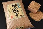 【ふるさと納税】平成30年産新米10kg山形県産「はえぬき玄米」