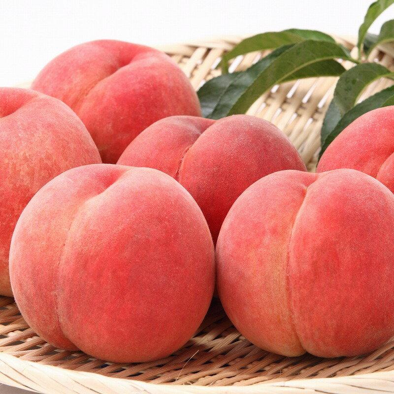 【ふるさと納税】厳選 白桃 たっぷり5kg <やわらか> 品種おまかせ 秀品 (12〜20玉)