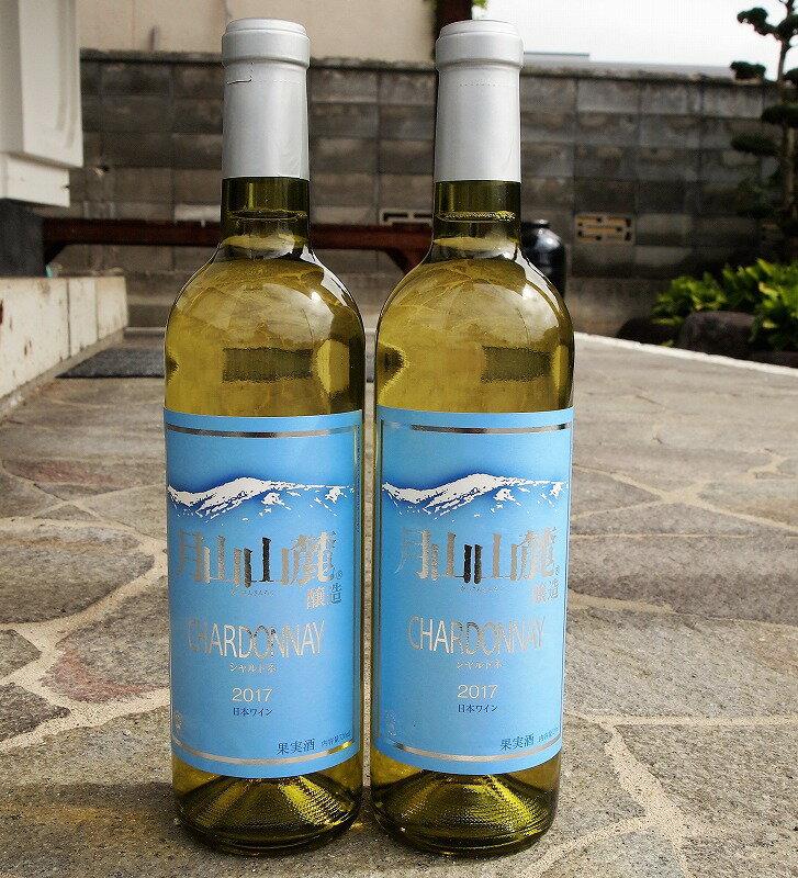 【ふるさと納税】月山山麓シャルドネヴィンテージ白ワイン2017 (720ml×2本)