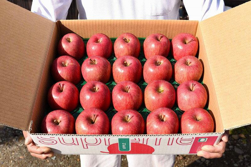 【ふるさと納税】農家こだわり『有機肥料栽培』りんご5kg 秀品サンふじ 20玉以上!