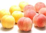 【ふるさと納税】黄桃(黄金桃)5kg秀品(13〜18玉)