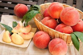 【ふるさと納税】山形の白桃 <やわらかい桃> 3kg 品種おまかせ (8〜14玉) 秀品