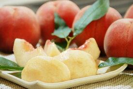 【ふるさと納税】山形の白桃 <品種おまかせ> 5kg(13〜20玉) 秀品