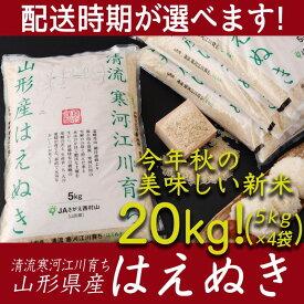 【ふるさと納税】たっぷり新米20kg! 「清流寒河江川育ち 山形産はえぬき」 令和元年産