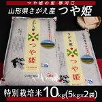 【ふるさと納税】つや姫10kg≪特別栽培米だから安心安全≫2020年産先行予約