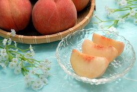 【ふるさと納税】たっぷり5kg! 山形の白桃 <硬い桃> 品種おまかせ (13〜20玉) 秀品