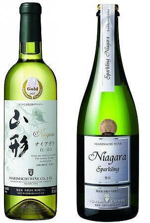 【ふるさと納税】スパークリングワイン(白甘口)と白ワイン(辛口)の飲み比べセット(計2本) 寒河江産ぶどう100%使用