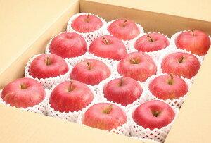 【ふるさと納税】【贈答品クラス】たっぷり5kg!りんご「サンふじ」 秀品 (12〜18玉)